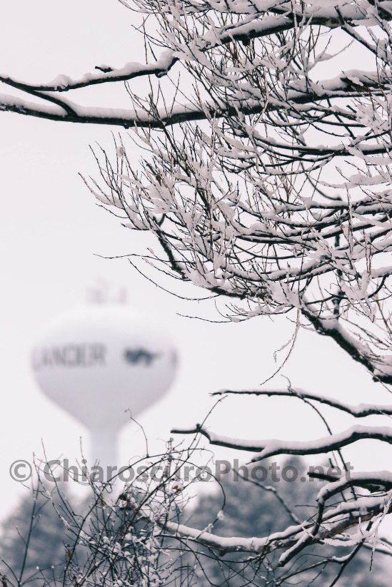 IMG_9592-1©